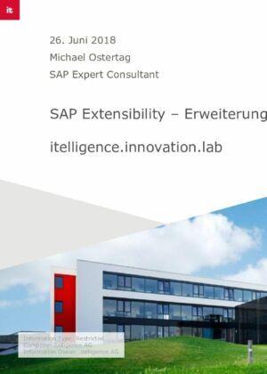 04. SAP Extensibility