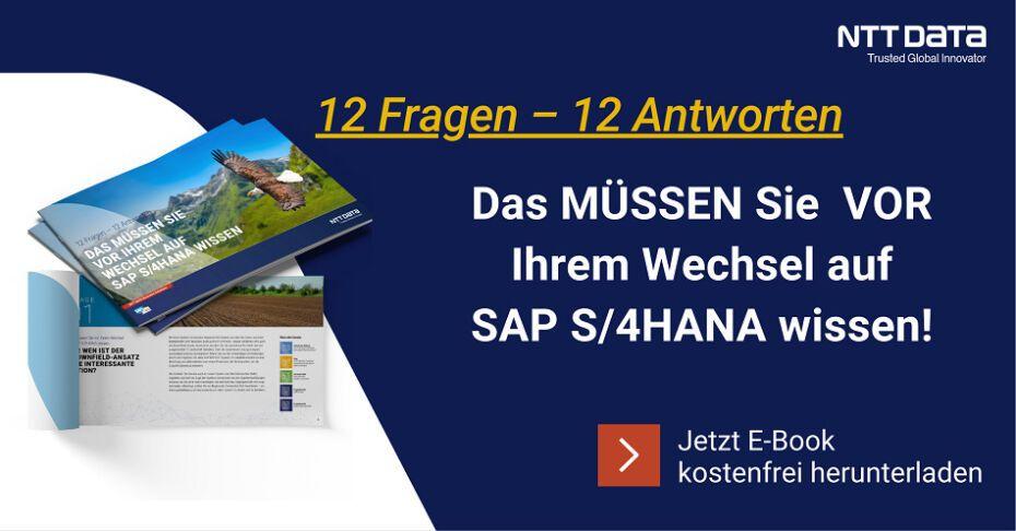 Zum E-Book Transition zu SAP S/4HANA