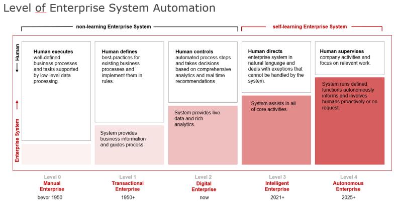 Levels of an Enterprise System (Source: SAP, own adjustments)