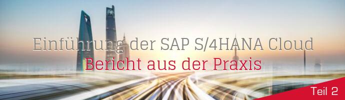 Headergrafik: Bericht aus der Praxis: SAP S/4HANA Cloud und die Fit-to-Standard-Workshops
