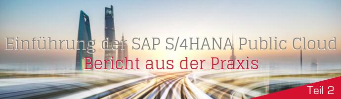 Headergrafik: Bericht aus der Praxis: SAP S/4HANA Public Cloud und die Fit-to-Standard-Workshops