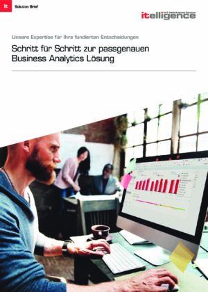 Broschüre - Business Analytics
