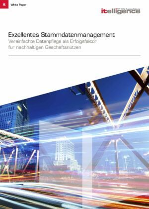 E-Book - Exzellentes Stammdatenmanagement