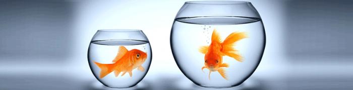 Image Fachtagung Ihr Weg von INFOR zu SAP