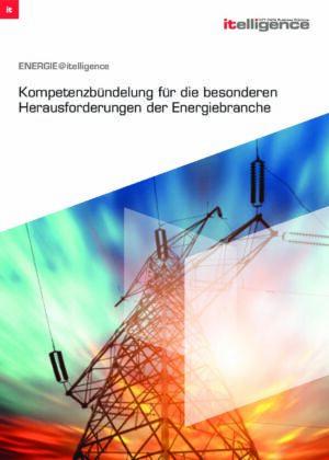 Flyer: Kompetenzbündelung für die besonderen Herausforderungen der Energiebranche