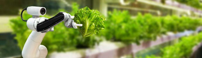 Das FarmBot-Netzwerk: Innovatives Smart-Farming-Konzept für die urbane Landwirtschaft