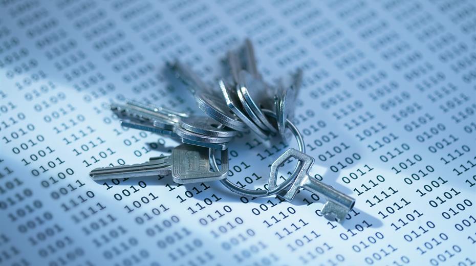 Hohe Datenqualität ist der Schlüssel für Ihren Geschäftserfolg