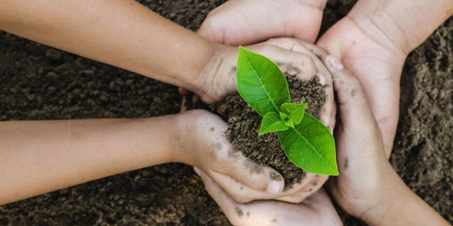 Sustainability and corporate social responsibility are pillars of our work.