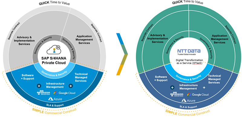 RISE with SAP vs DTaaS