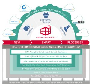 SAP HANA Cloud Platform The glue that holds everything together
