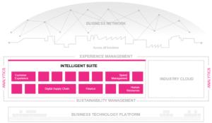 Intelligent Suite (Source: SAP)