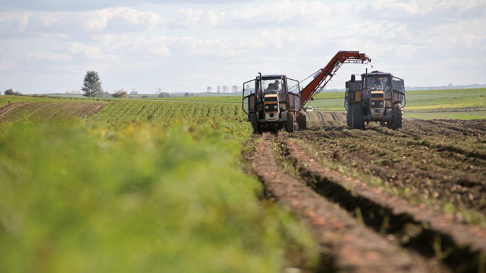 Tractor harvesting crops from field, SVZ International B.V., Breda, Netherlands