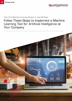 A Strategic Guide to Implementing Machine Learning