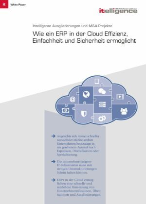 Whitepaper  ERP in der Cloud