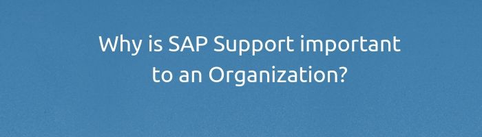 Why is SAP Support important to an Organization?