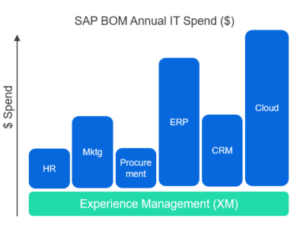 SAP BOM Annual IT Spend