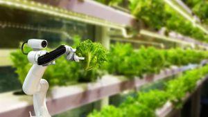 Tekniken hjälper livsmedelsindustrin att möta utmaningar på en växande, föränderlig planet.