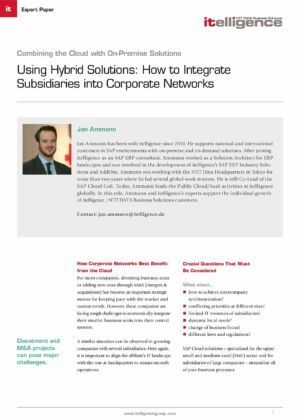 Using Hybrid Solutions: Learn How to Integrate Subsidiaries into Corporate Networks