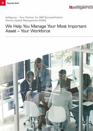 Want to Boost Business with HCM? Get to Know the 4 Basics.