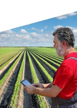 SAP for agri-food