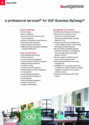 it.professional services BP for SAP Business ByDesign®