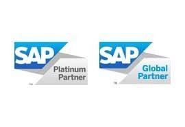 SAP Platinum Global Logo