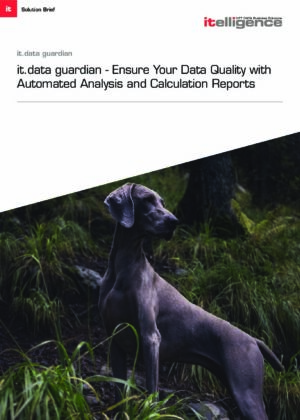 Be Vigilant When It Comes to the Quality of Your Data - Our AddOn Helps You.